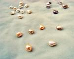 Perlas Barrocas con taladro completo de 2mm. Rosas