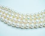 Collar de perla Akoya semiredonda